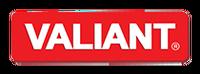 Valiant. Системы хранения