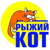 Рыжий кот. Игрушки, настольные игры и холсты по номерам
